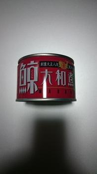 DSC_0169-s.JPG